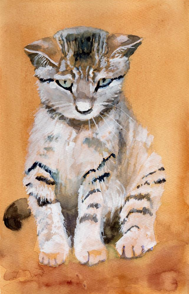 """Amused Kitten"" original fine art by Bunny Griffeth"