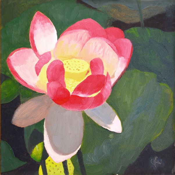 """Pink Lotus"" original fine art by Gary Westlake"