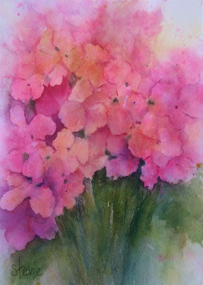 """Hydrangeas in Pink"" original fine art by Stevie Denny"