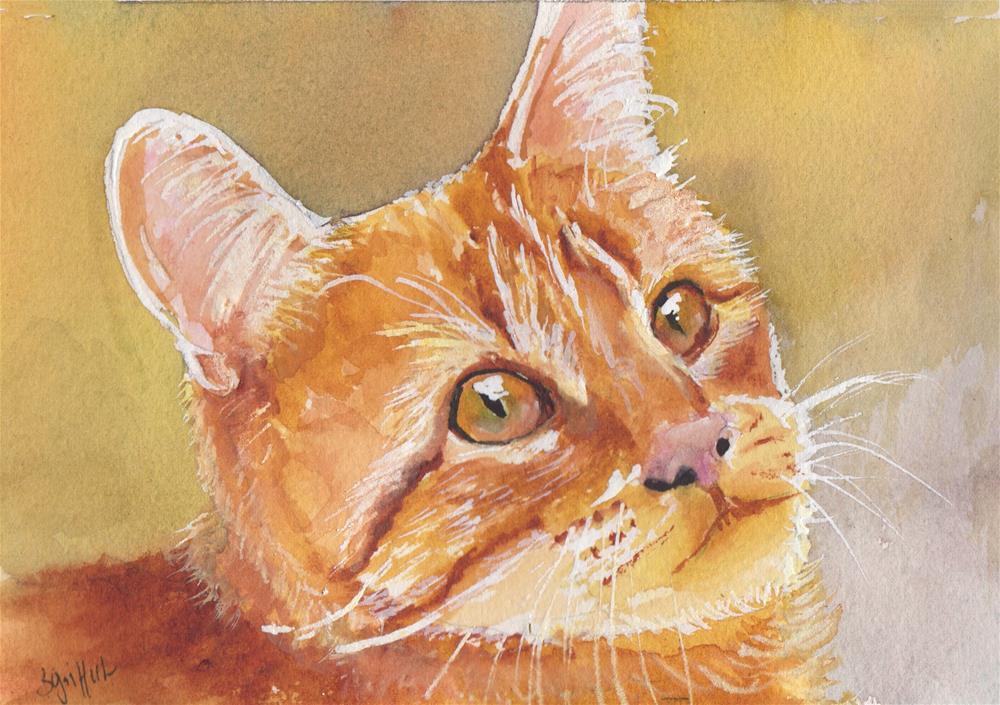 """Orange Cat"" original fine art by Bunny Griffeth"