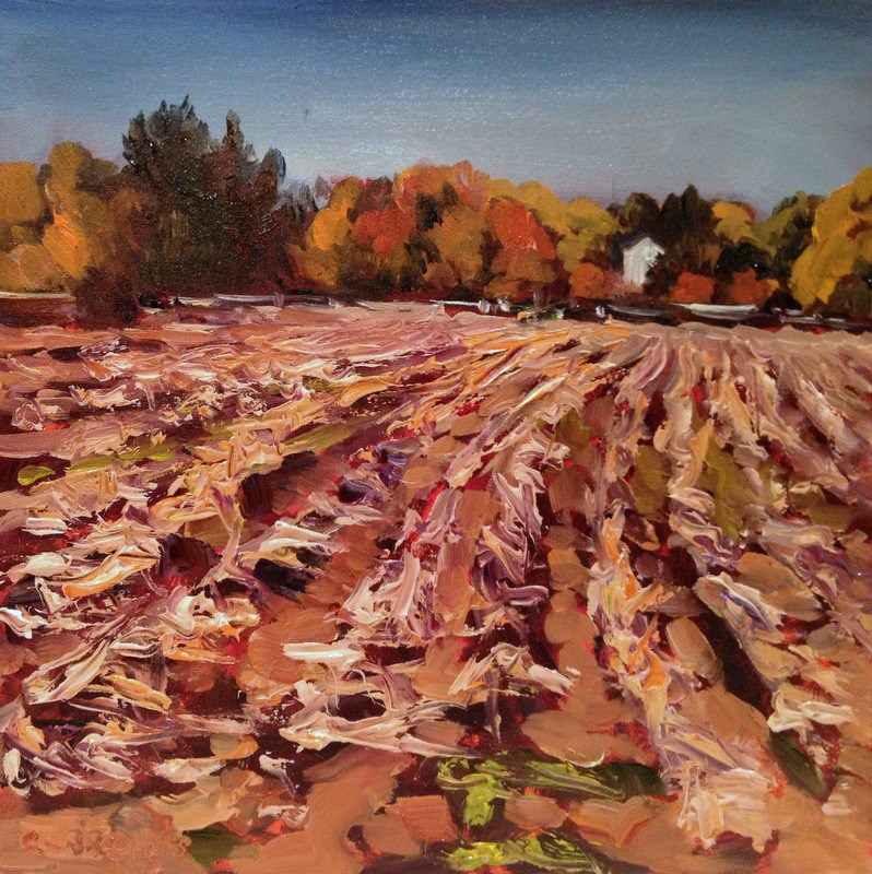 """""""After the Corn II, Day 36"""" original fine art by Claudia L Brookes"""