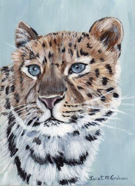 """""""Leopard ACEO"""" original fine art by Janet Graham"""