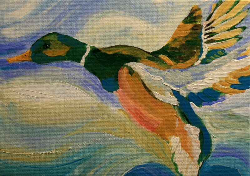 """Canard"" original fine art by Jean Nelson"