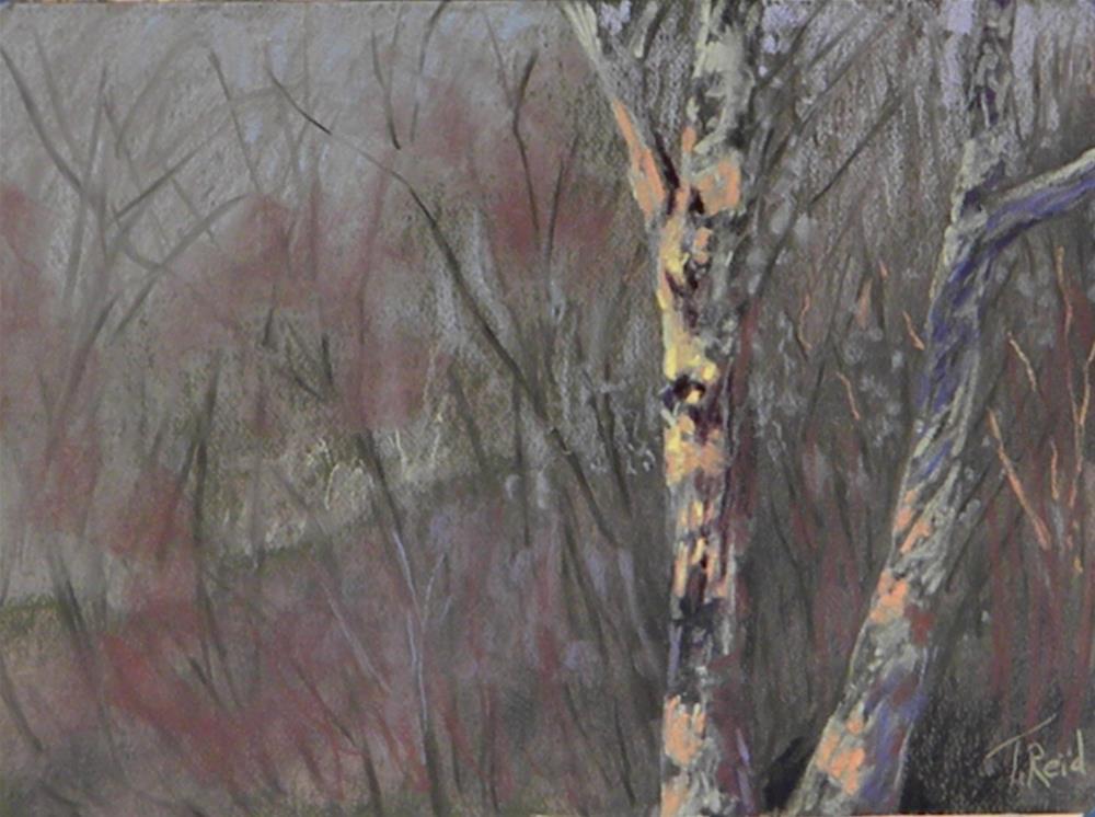"""""""Light in the Fog"""" original fine art by Toby Reid"""