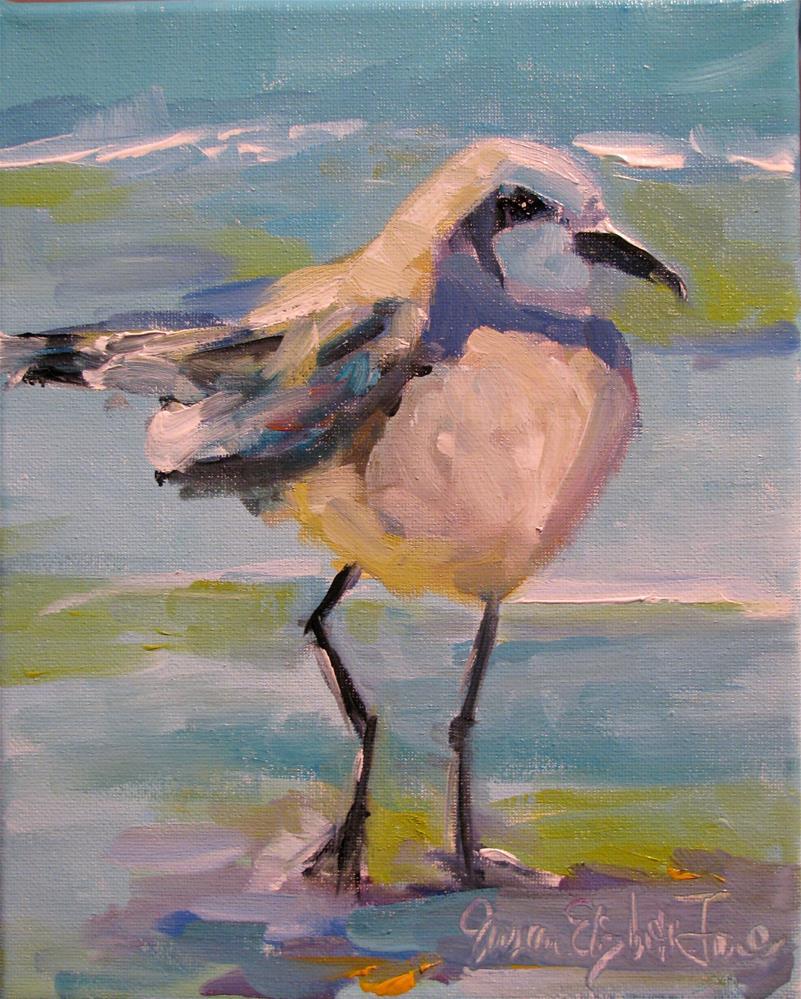 """""""Snowy Plover"""" original fine art by Susan Elizabeth Jones"""