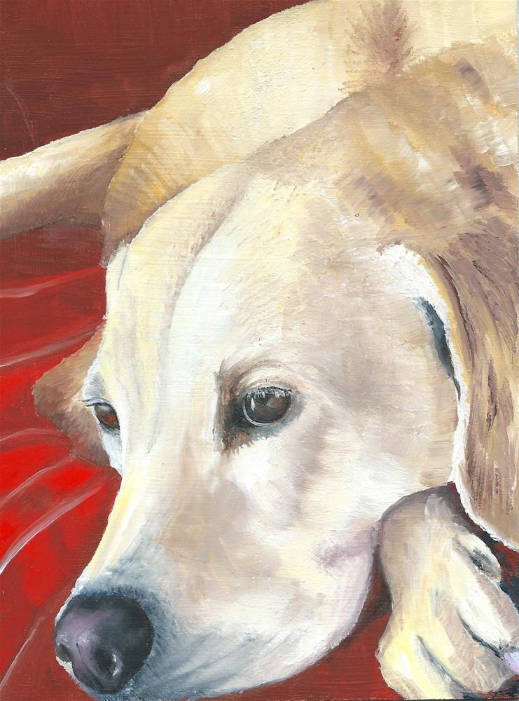 """Labrador 3"" original fine art by Karen Robinson"