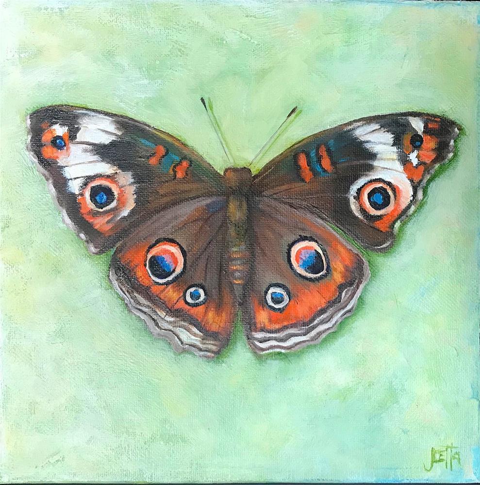 """Moth"" original fine art by Joetta Currie"