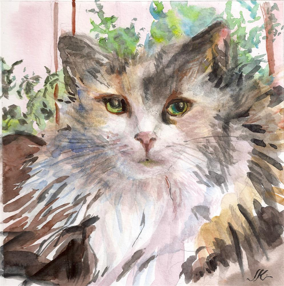 """Calico Cat"" original fine art by Jean Krueger"