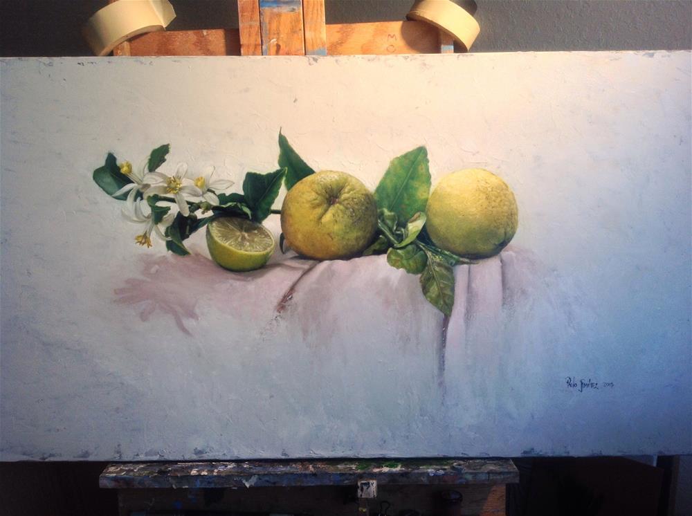 """Citrus – the finished piece"" original fine art by Paulo Jimenez"