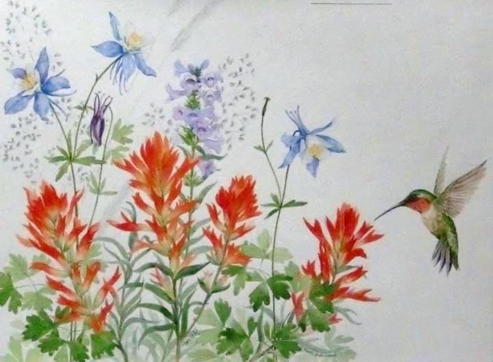 """Ruby Throated Hummingbird/Indian Paintbrush"" original fine art by Jean Pierre DeBernay"