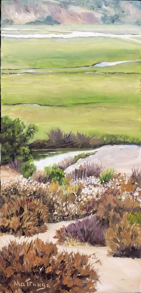 """Wet 'N Dry - Newport Beach Back Bay"" original fine art by Patricia Matranga"