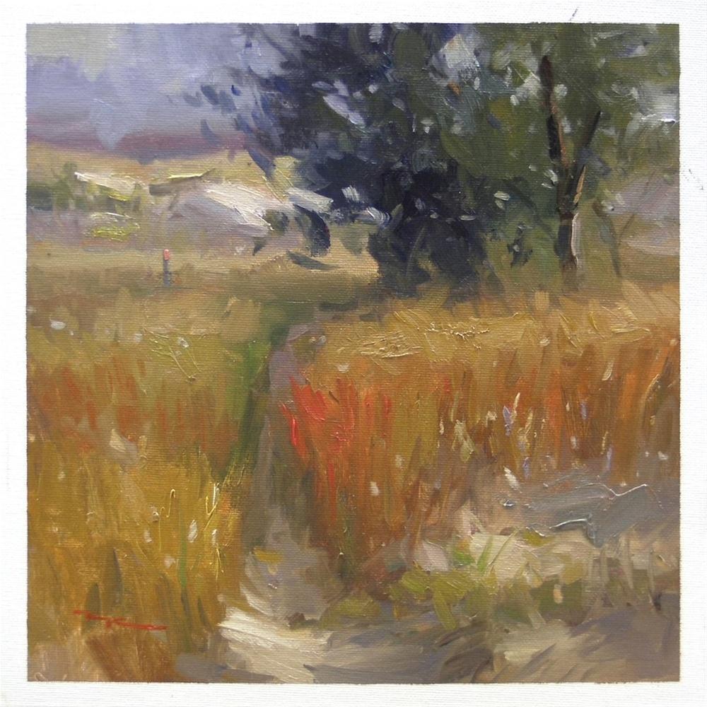 """Morning, Ruakaka Reserve"" original fine art by Richard Robinson"