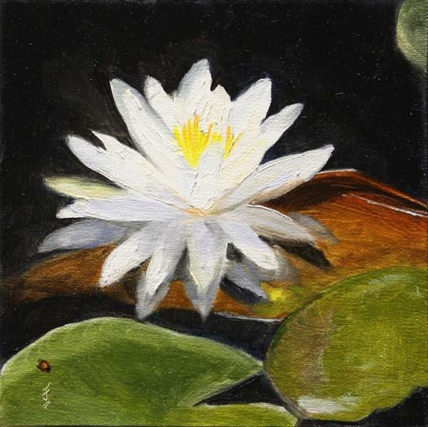 """White Lily"" original fine art by Jane Frederick"