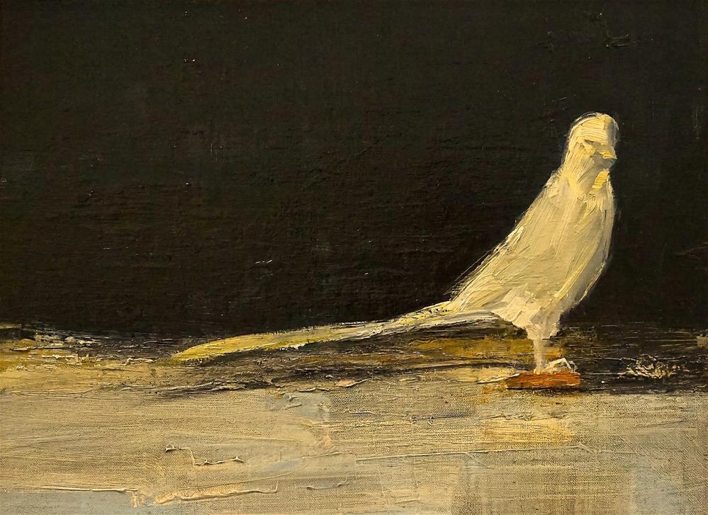 """White Bird 12x20 oil 2016"" original fine art by Deborah R Hill"