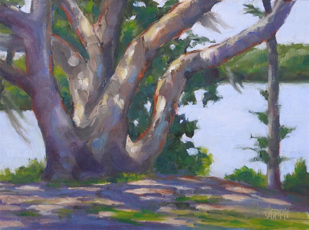 """""""Big Oak, 6x8 Oil on Canvas Board"""" original fine art by Carmen Beecher"""