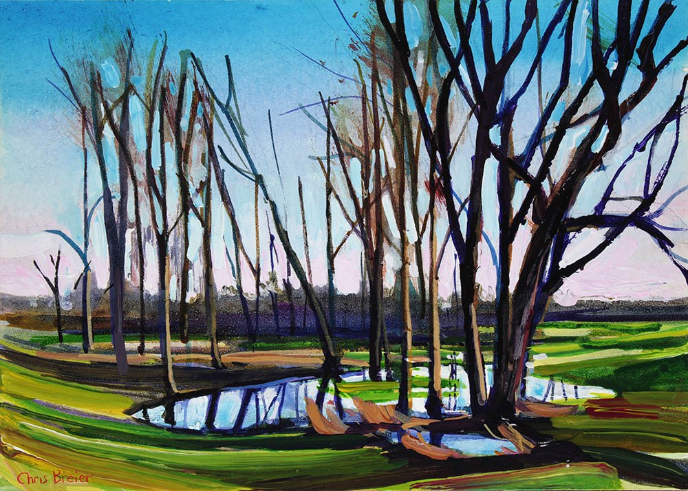 """Trees and Puddles"" original fine art by Chris Breier"