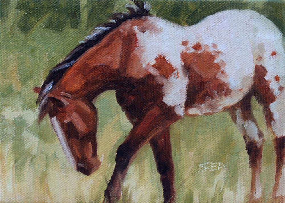"""Meadow IX"" original fine art by Susan Ashmore"