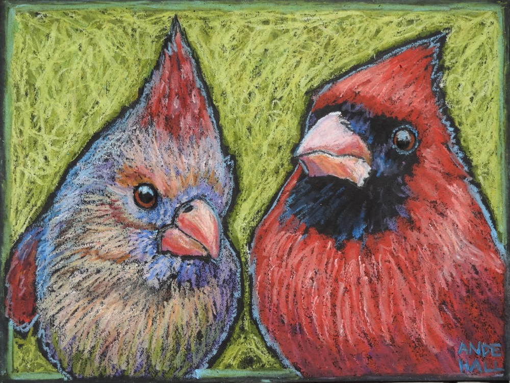 """""""Cardinals Up Close and Personal"""" original fine art by Ande Hall"""