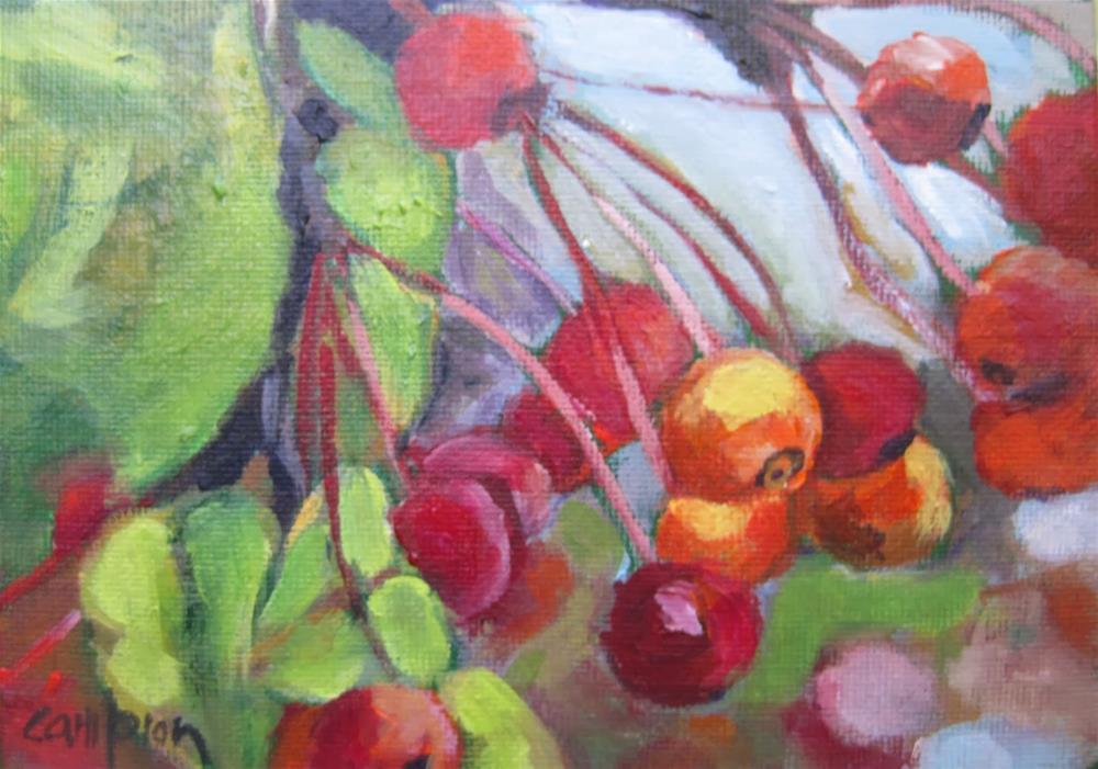 """184 Autumn Berries"" original fine art by Diane Campion"