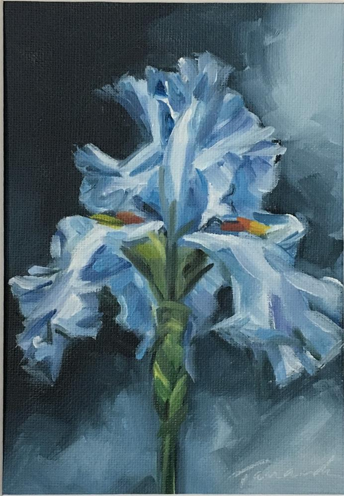 """Blue Iris (19-12)"" original fine art by Tamanda Elia"