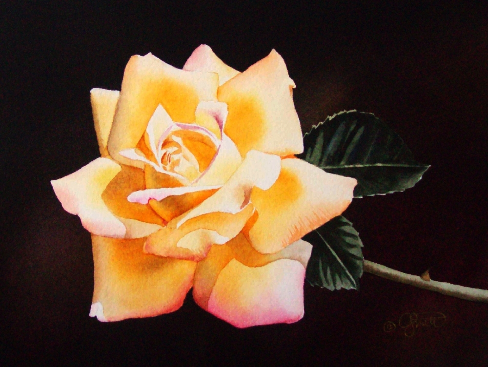 """Yellow Rose"" original fine art by Jacqueline Gnott, TWSA, WHS"