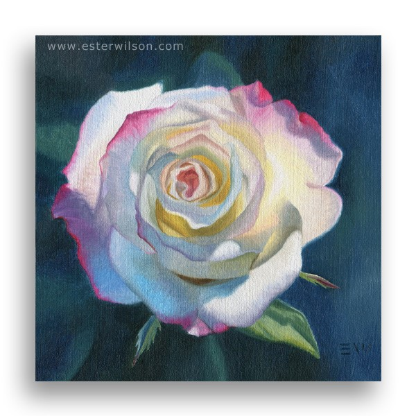 """Watercolor Rose"" original fine art by Ester Wilson"
