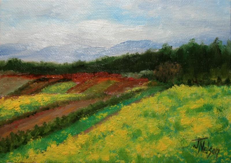 """""""Fields of Yellow Mustard"""" original fine art by Jean Nelson"""