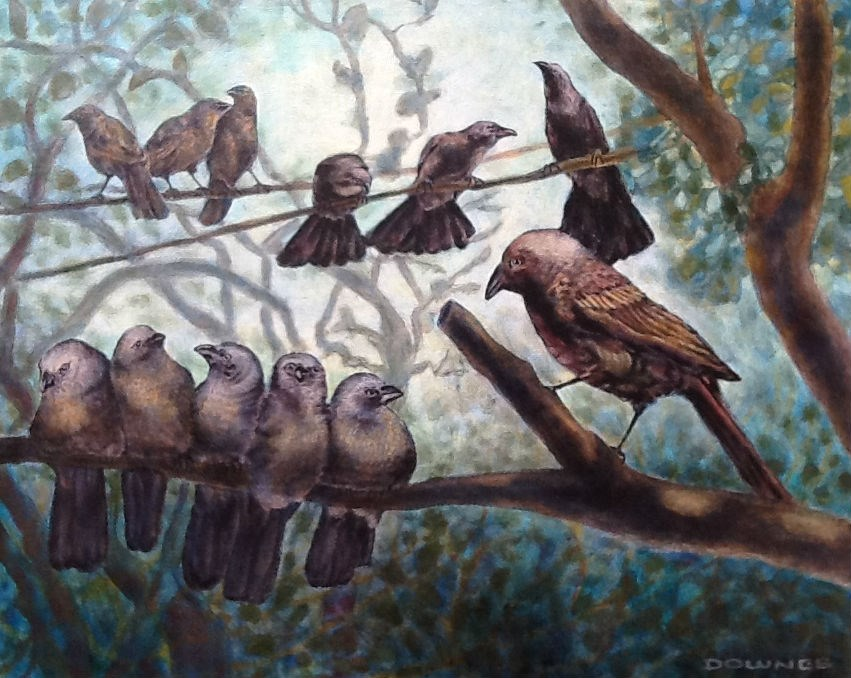 """288 APPOSLE BIRDS"" original fine art by Trevor Downes"