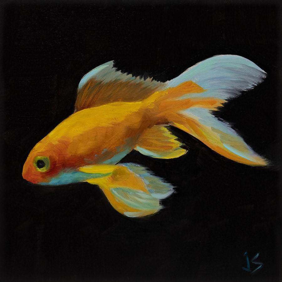 """""""Veil Tail Fish"""" original fine art by Johnna Schelling"""