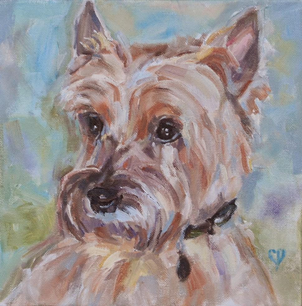 """""""Cairn Terrier, Original Oil by Carol DeMumbrum"""" original fine art by Carol DeMumbrum"""