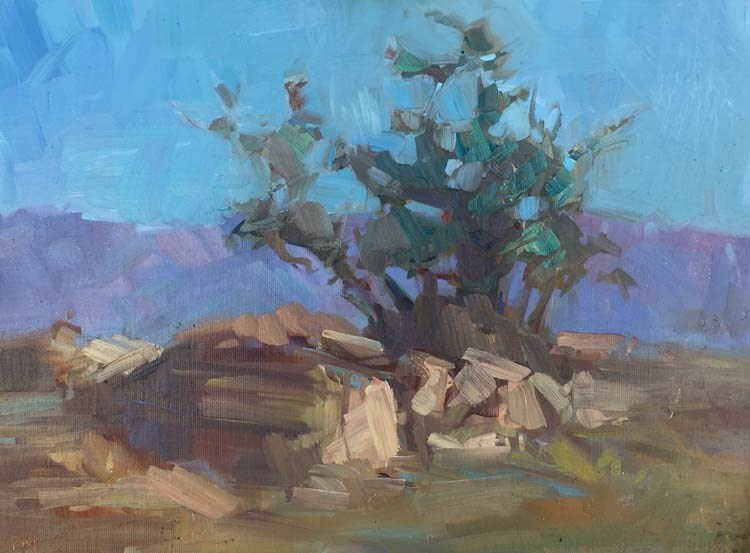 """""""Morning in The San Jacinto Mountains"""" original fine art by Patti McNutt"""