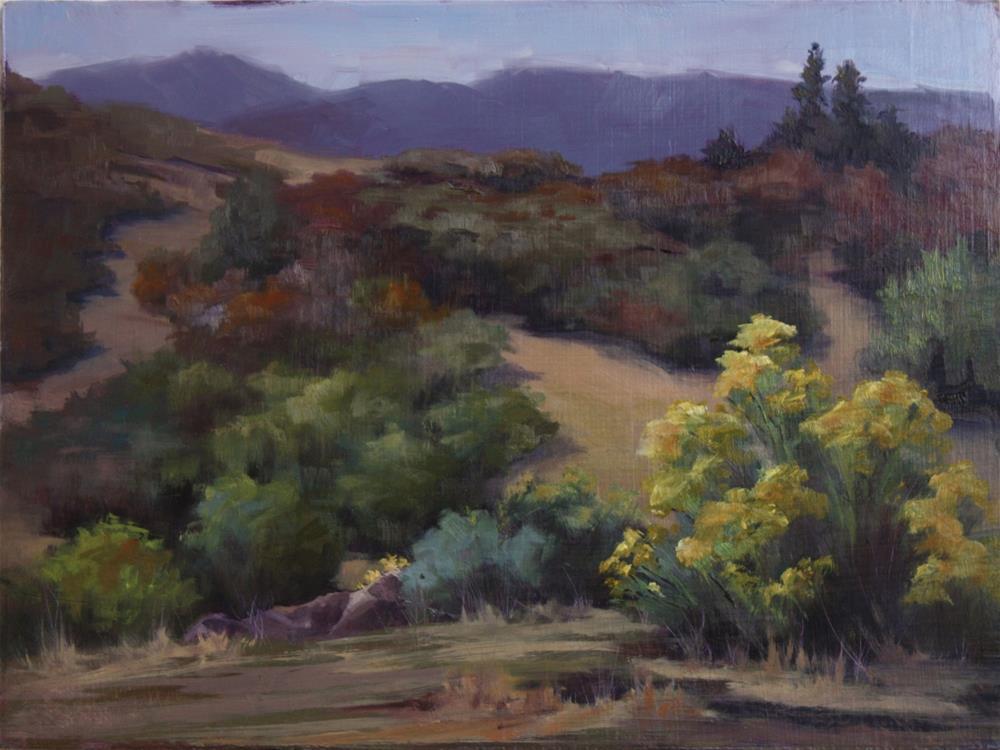 """North Ken Caryl Road"" original fine art by Sheila Marie"