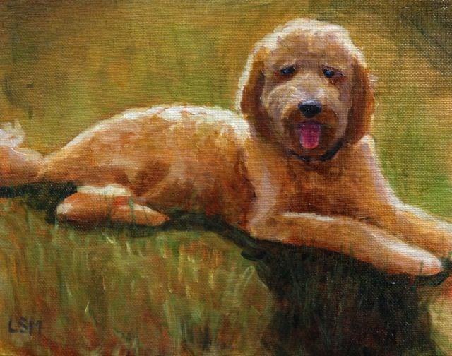"""Lily"" original fine art by Linda Marino"