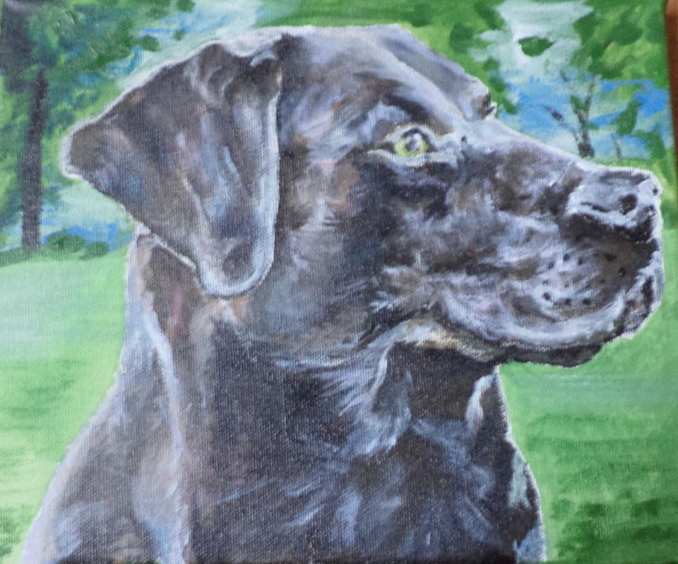"""Black brown dog portrait"" original fine art by tara stephanos"