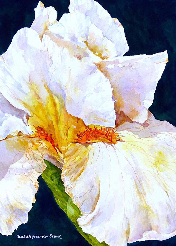 """Sunny Iris, framed"" original fine art by Judith Freeman Clark"