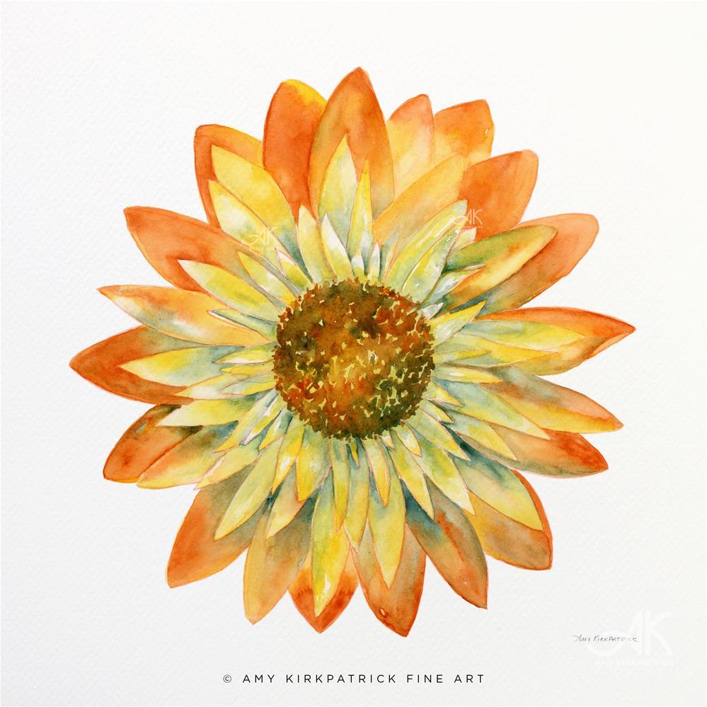 """YELLOW ORANGE DAISY #0509"" original fine art by Amy Kirkpatrick"