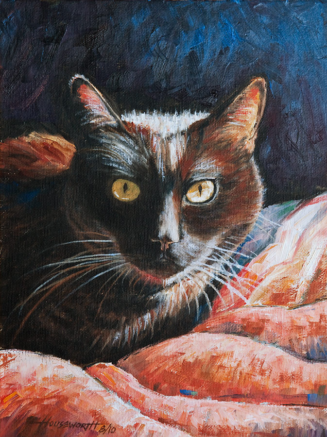 """Black Cat in Sunlight"" original fine art by Terry Houseworth"