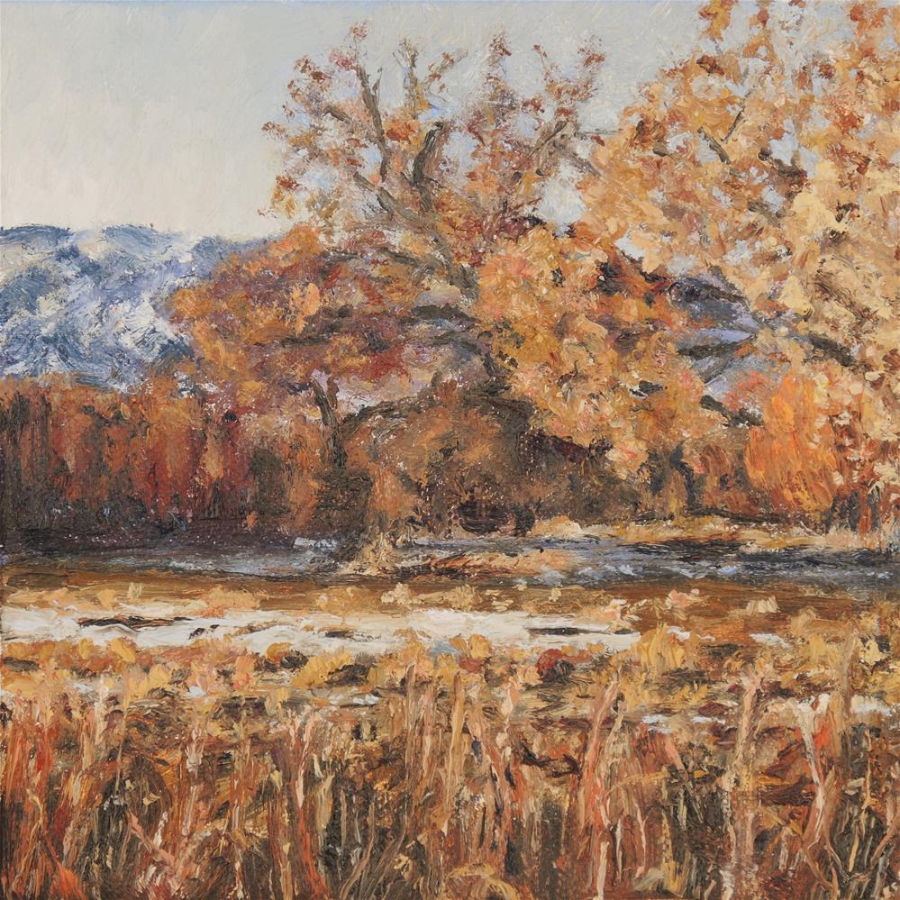 """""""Winter at Bosque del Apache"""" original fine art by Candi Hogan"""