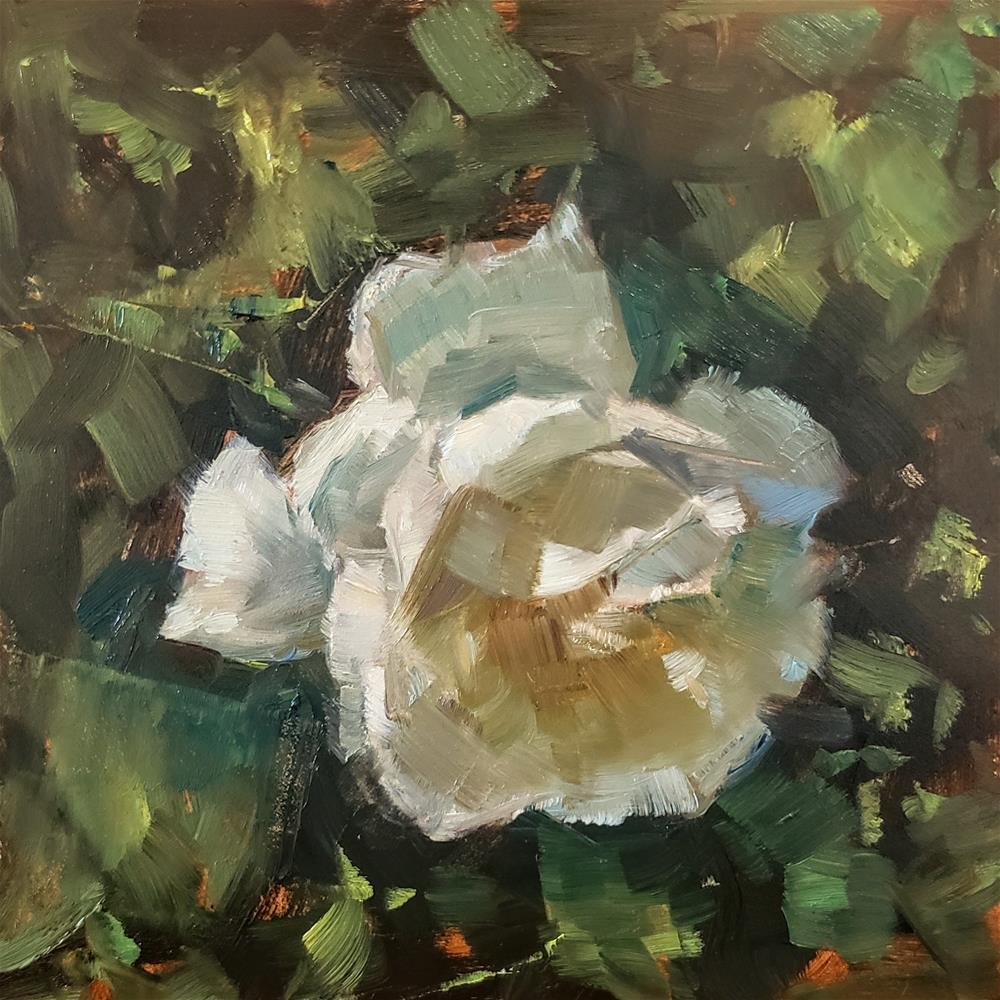 """White Rose"" original fine art by Barbie Smith"