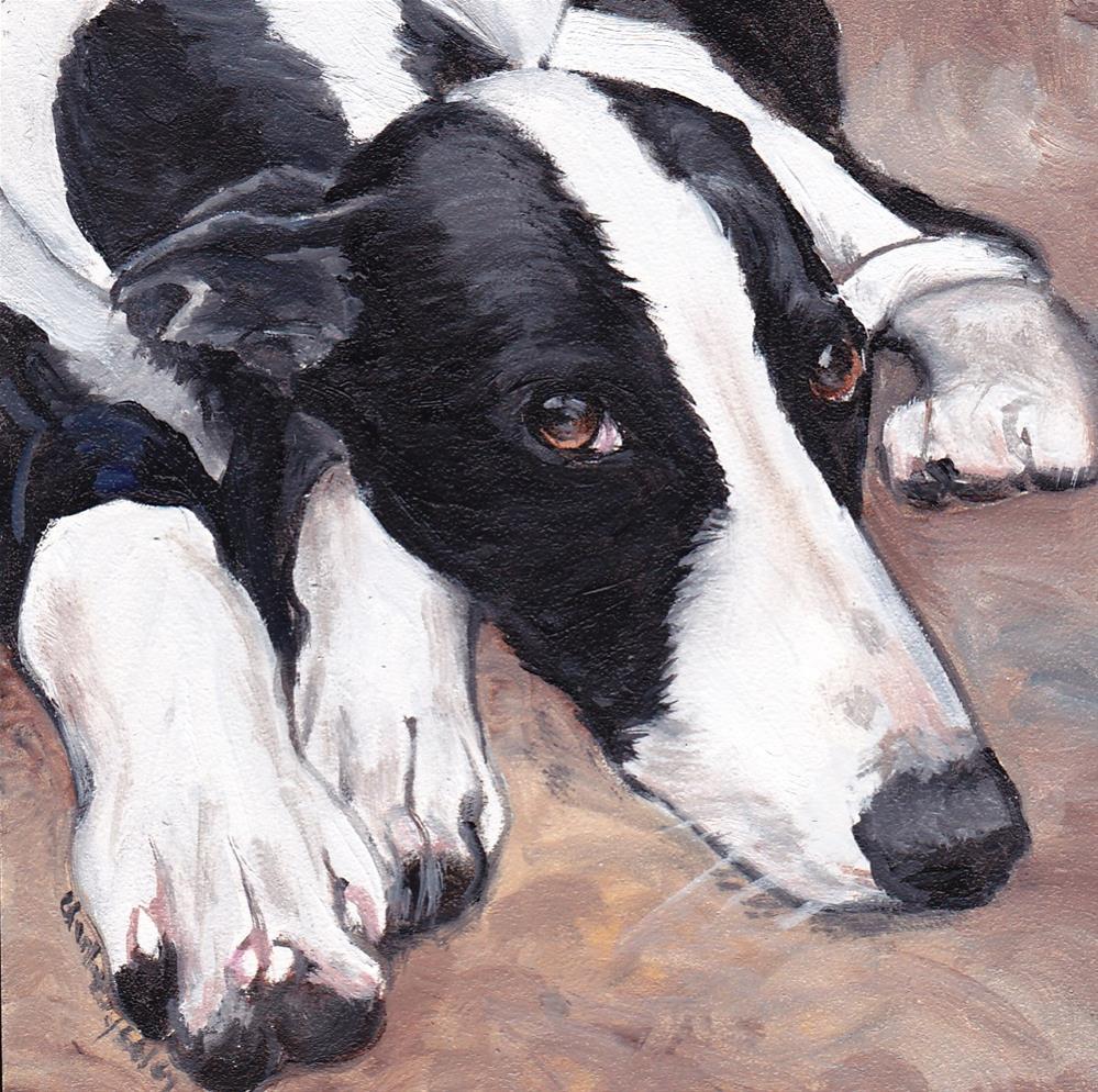 """Black and White Greyhound"" original fine art by Charlotte Yealey"