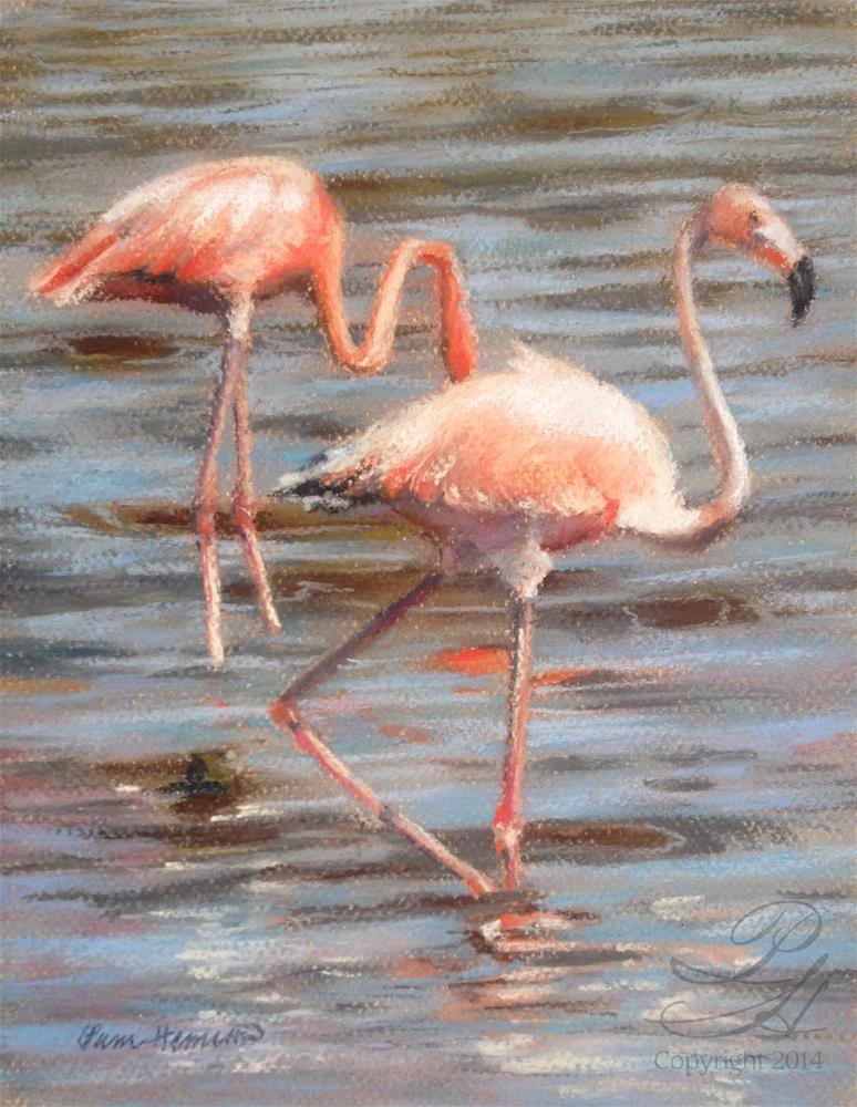 """""""Flamingos"""" original fine art by Pamela Hamilton"""