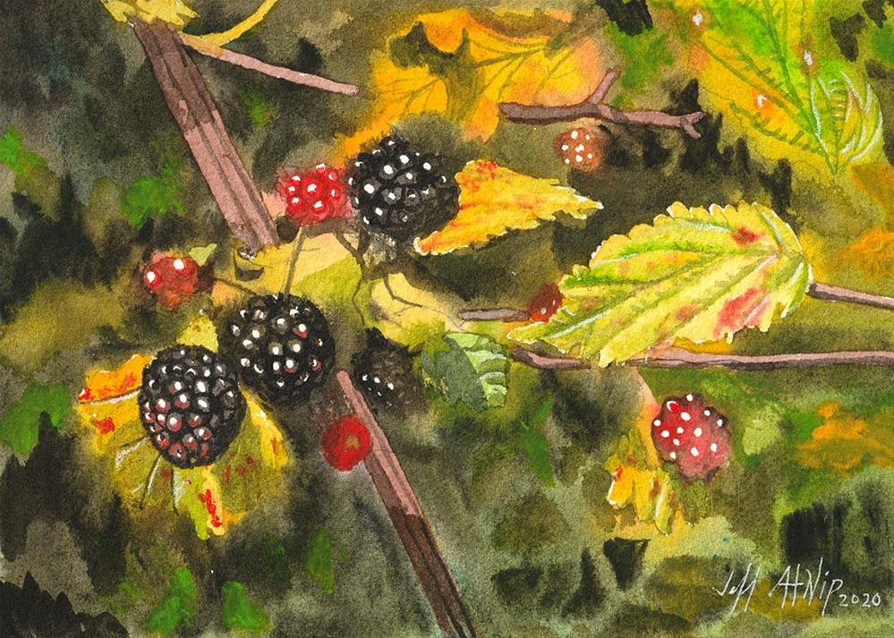 """Blackberries no. 2"" original fine art by Jeff Atnip"