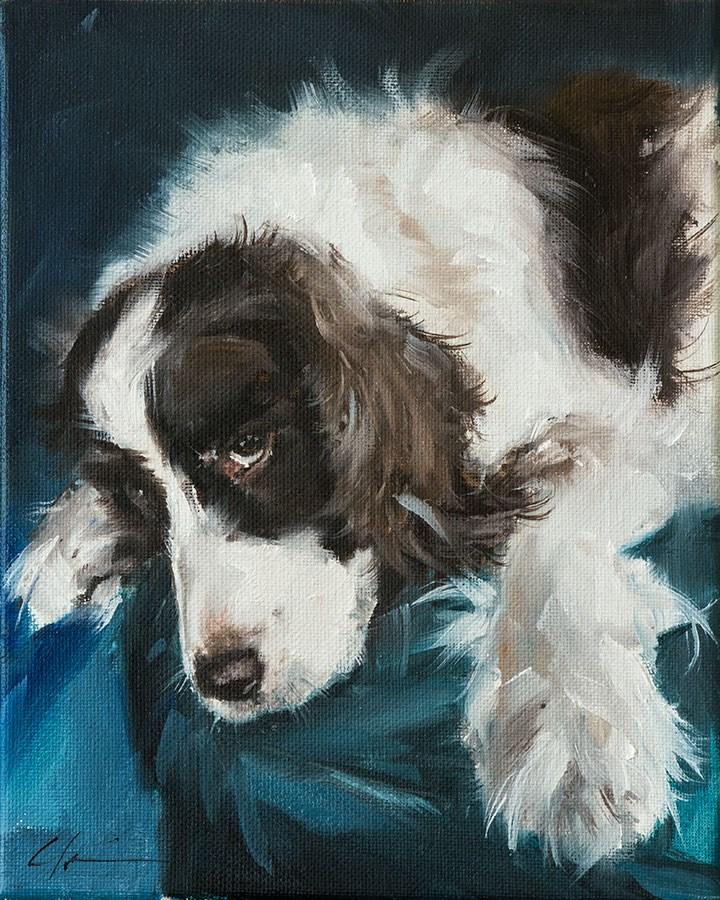 """""""PAINT MY DOG - Star Puppy"""" original fine art by Clair Hartmann"""