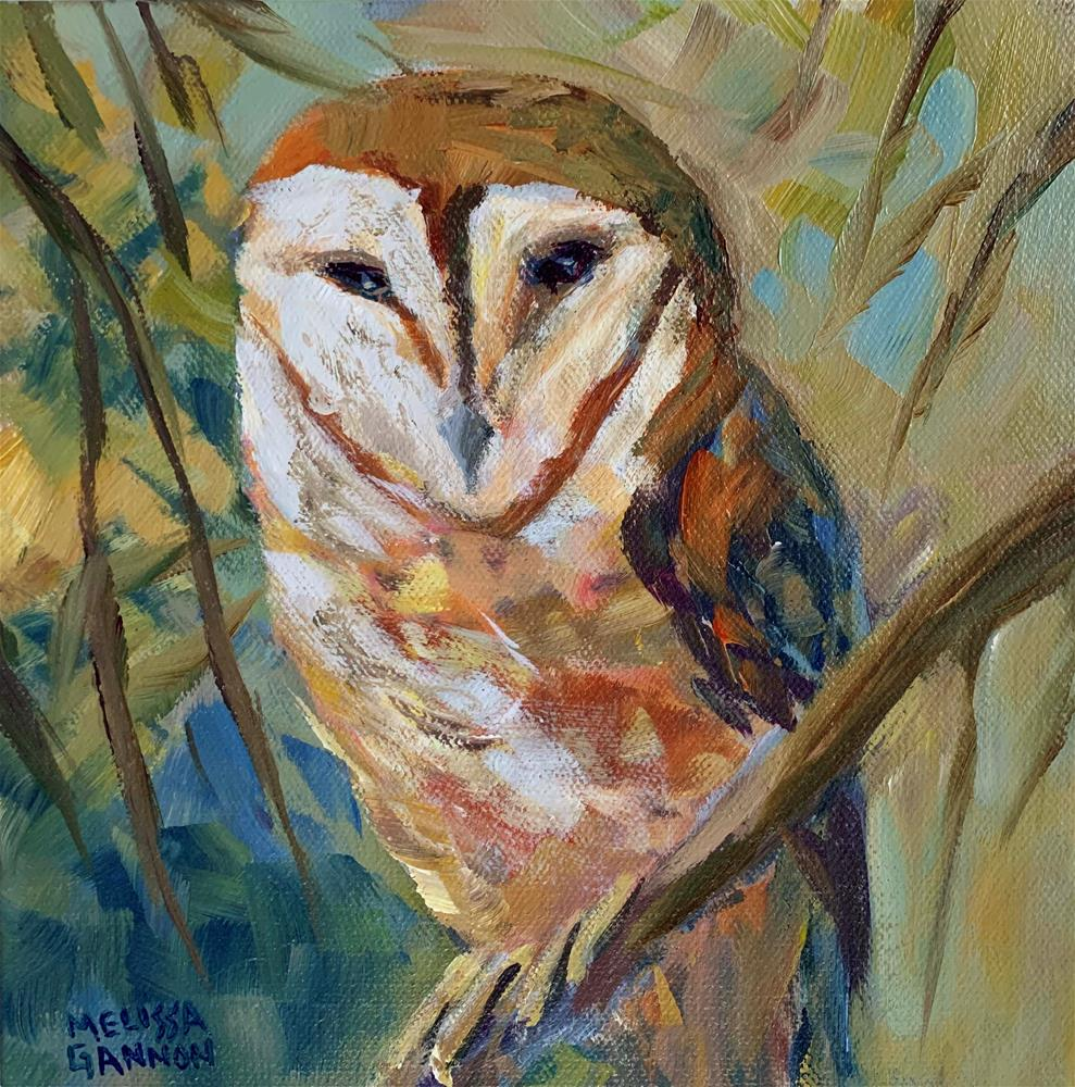 """Barn Owl"" original fine art by Melissa Gannon"