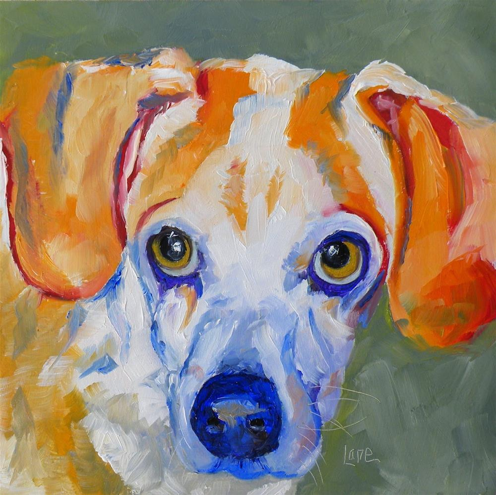 """CORKIE 50/100 OF 101 PET PORTRAITS IN 101 DAYS © SAUNDRA LANE GALLOWAY"" original fine art by Saundra Lane Galloway"