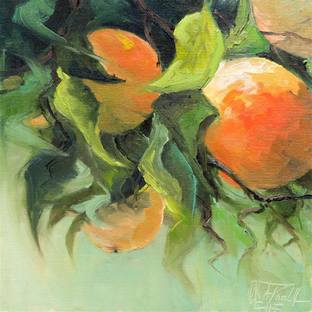 """Sweet Tangerine"" original fine art by Christa Friedl"