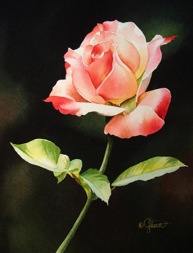 """Pink & White Rose"" original fine art by Jacqueline Gnott, TWSA, WHS"