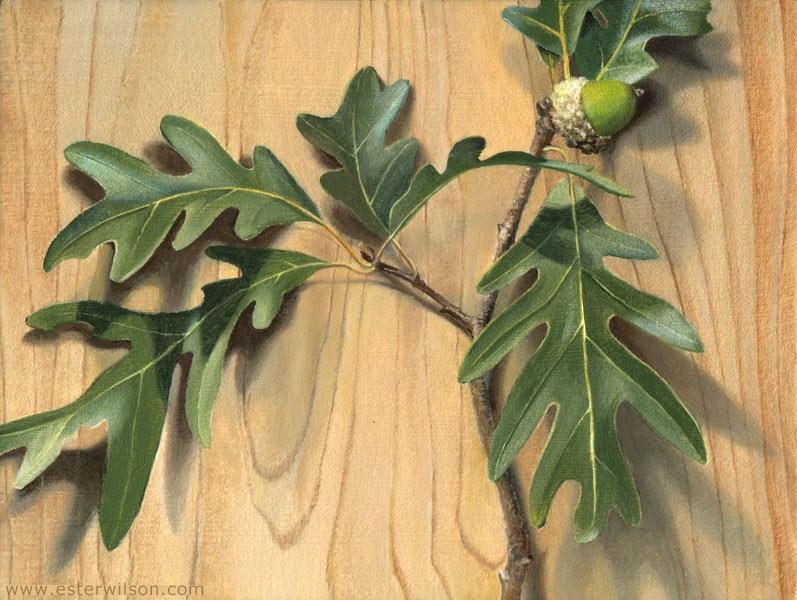 """Fallen Branch"" original fine art by Ester Wilson"
