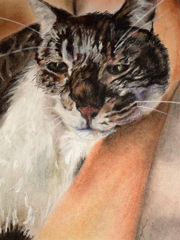 """Lady and Kitty"" original fine art by tara stephanos"