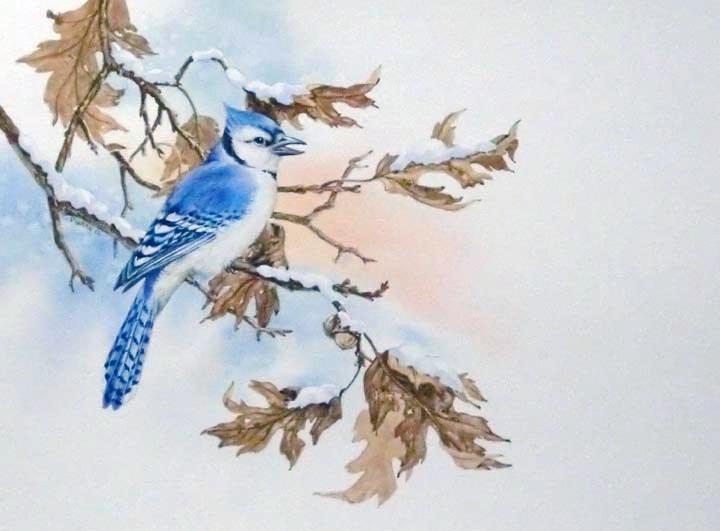 """""""Eastern Jay"""" original fine art by Jean Pierre DeBernay"""